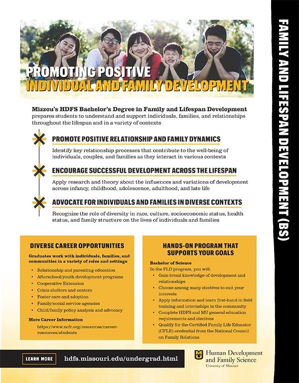 FLD brochure PDF