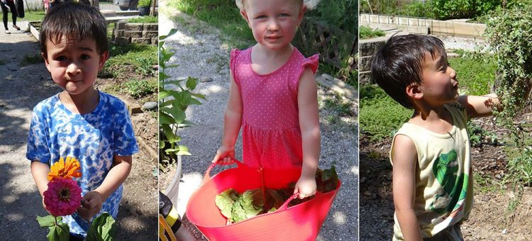 CDL kids at garden day